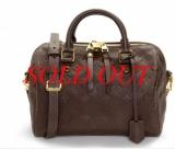 Túi Louis Vuitton Monogram Anne 25 màu nâu M40761