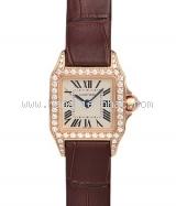 NEW Đồng hồ Cartier Santos WF902004